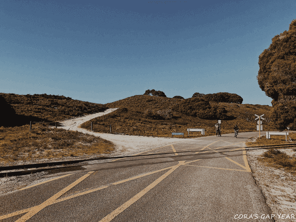 羅特尼斯島環島