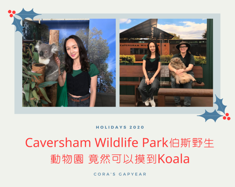 Caversham Wildlife Park伯斯野生動物園